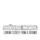 looking closely from a distance